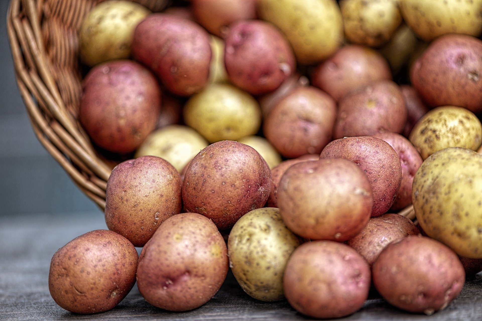 potatoes-4331742_1920